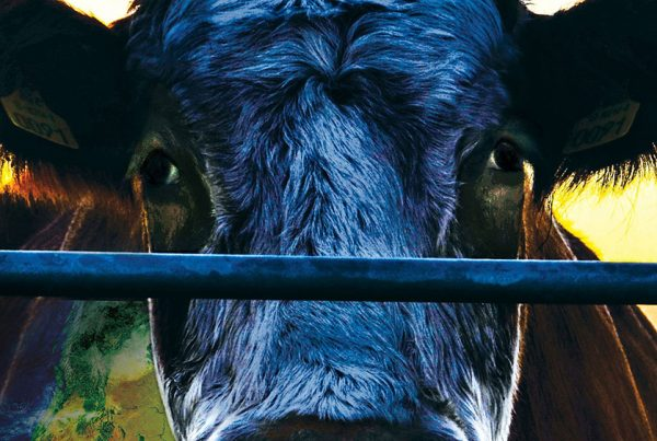 cowspiracy-cropped-movie-poster